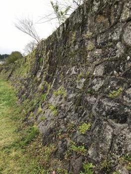 本吉野家跡の石垣