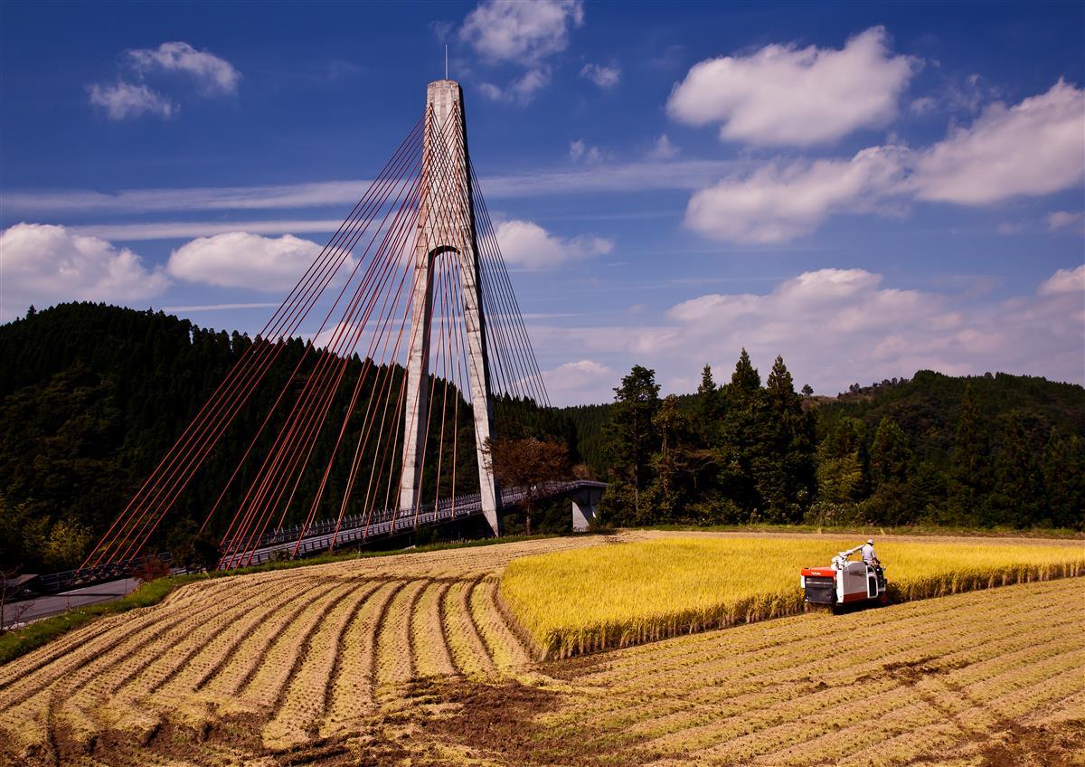 棚田と鮎の瀬大橋